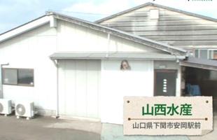 山西水産株式会社  画像